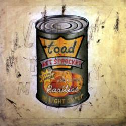 Toad the Wet Sprocket : In Light Syrup