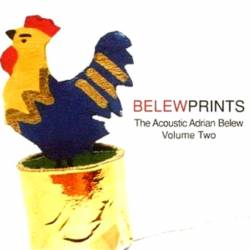 Adrian Belew : Belewprints : The Acoustic Adrian Belew, Vol.2