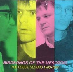 Birdsongs Of The Mesozoic : The Fossil Record (1980-1987)