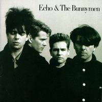 Echo And The Bunnymen : Echo and the Bunnymen